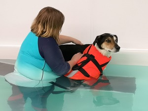 Aquatic Massage at East Yorkshire Hydrotherapy